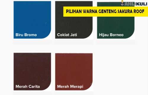 Pilihan Warna 1