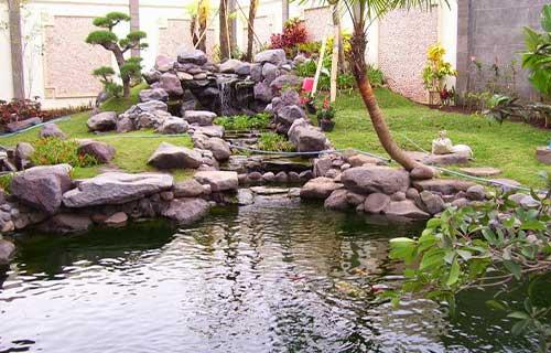 Kolam Ikan Minimalis Suasana Pedesaan