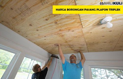 Harga Borongan Pasang Plafon Triplek Per Meter Persegi